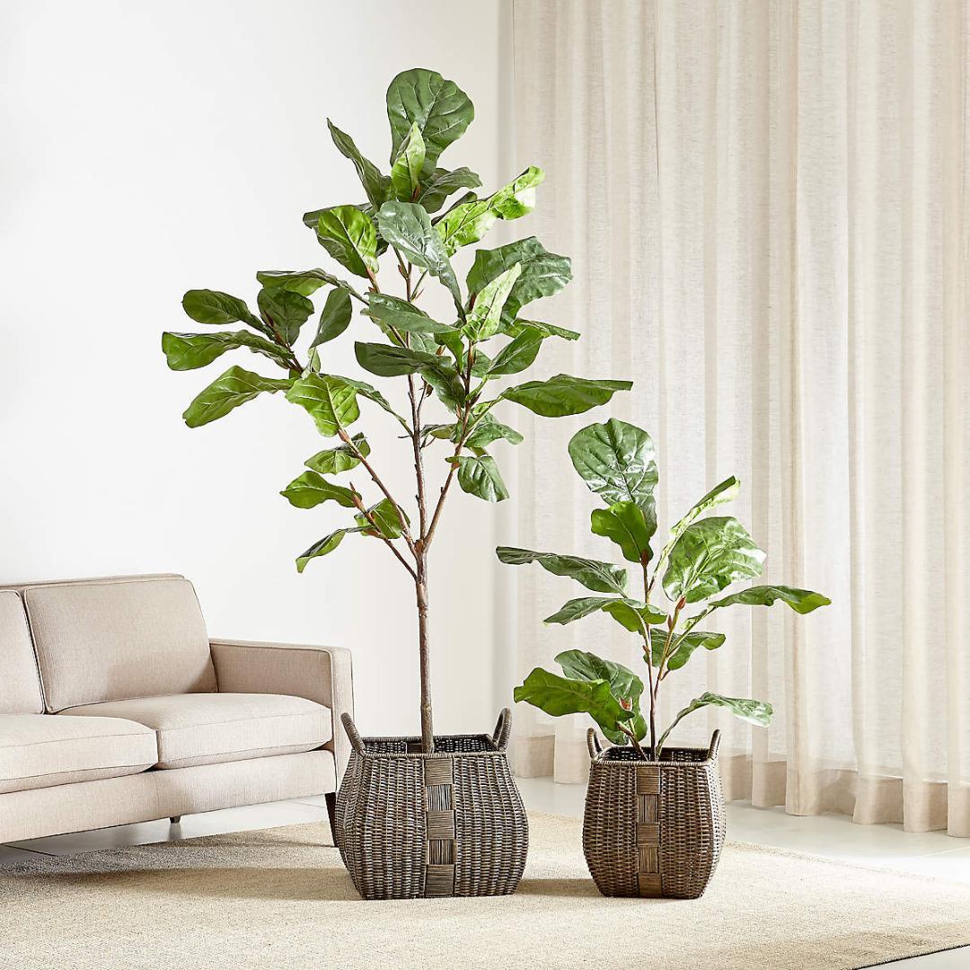 Two faux leafy plants in a woven basket
